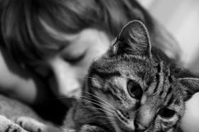 ragazza con gatto, estate 2008