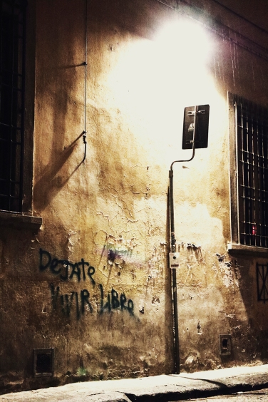 dejate vivir libre. Firenze, novembre 2013