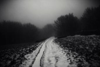 continuare avanti, Monte Falco, Casentino, dicembre 2014