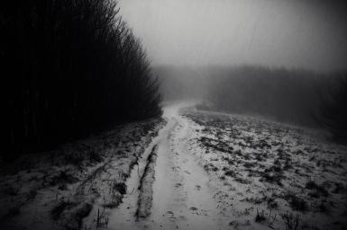 fischia il vento e infuria la bufera, Monte Falco, Casentino, dicembre 2014