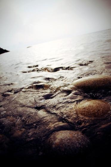 richiamo, Isola d'Elba, estate 2011