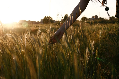 buscando apuestas del sol, Sevilla, primavera 2011